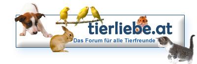 Das Forum für alle Tierfreunde - tierliebe.at